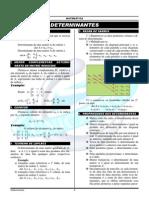 determinantes.pdf