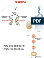 Aula DUPLICAÇÃO DO DNA