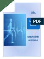 Presentacion Unidad 1. El Ser Humano y Su Salud.parte 1 La Organizacion Del Cuerpo Humano