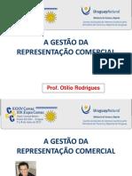 1 (201205202507)Professor Otilio a Gestao Da Representacao Comercial