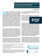 ¿Es el Decreto 0953 de 2013 funcional para la implementación de PSA en Colombia?
