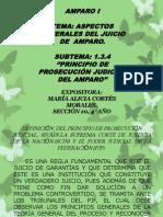 PRINCIPIO DE PROSECUCIÓN JUDICIAL