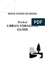 Urban Foraging Guide