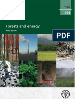 Fao-Forests and Energy-key Issues