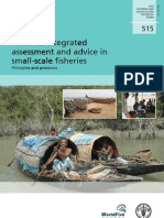 Fao-small Scale Fisheries