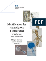 Identification Champignons Importance Medicale
