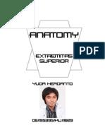 Anatomy of Extremity Superior.part 2