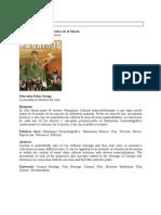 El Patrimonio cinematográfico en el Museo.pdf