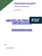 GestaoProcEmpresariais_Reengenharia