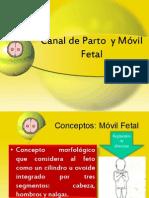 Canal de Parto  y Móvil Fetal