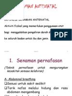 Senaman Antenatal