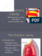 The Thoracic Cavity