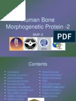Final Human Bone Morphogenetic Protein