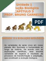 Cap. 3 - Evolução Biológica