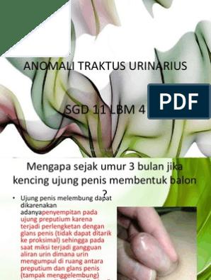 A prosztatitis nem zavar