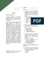 Examen sociales 4