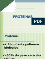 2013Aula3-Proteinas