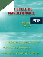 articoledemarochinarie-110617123944-phpapp02