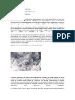 Pseudogota Clasica o Condrocalcinosis.docx