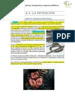 Tema 6 La Detencion