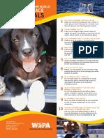 53 Wspausa Help Animals Poster