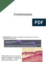 Etiopatogenia Sjs Net