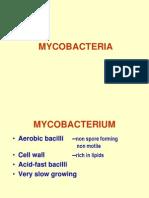 My Co Bacteria