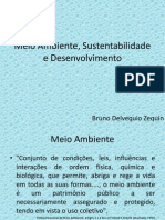 Meio Ambiente Sustentabilidade Desenvolvimento