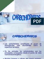 Carbohidratos Exp Miercoles +