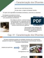 Cap 01 - Caracterizaçao dos Efluentes Sanitarios p envio