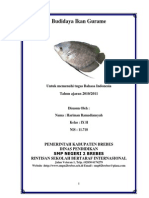 Karya Tulis Budidaya Ikan Gurame