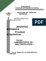 Apuntes Impresos Primavera 2013
