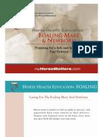 Foaling Mare Final