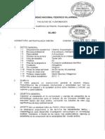 VI CICLO - Antropología Andina