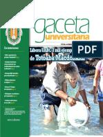 Gaceta 313