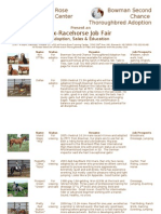 Ex-Racehorse Job Fair Flyer