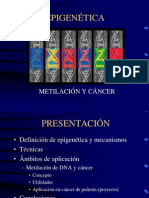 Sesion Metilacion Doctorado Jesus Mendez