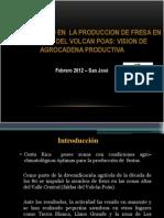 Competitividad Fresa - EnERO 2012 (Extracto)