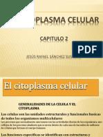 elcitoplasmacelular-histologiacapitulo2-130527210950-phpapp02