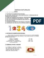Numeros Naturales y Operaciones