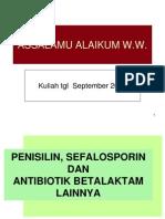 02 b Laktam-sefalosporin