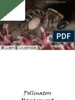 Livro Pollinators Management in Brazil