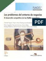 Problemas Del Entorno de Negocios. Desarrollo Competitivo de Las PYME