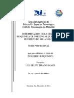 Tesis Luis Felipe Empastado 10122012