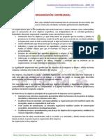 IV. Estructura Organizacional