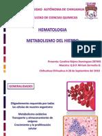 Metabolismo Del Fe