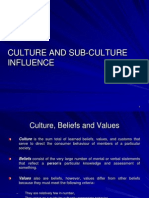 Culture and Sub-culture Influence