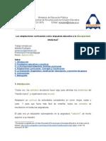 Adaptaciones (Las) Curriculares Respuesta Educativa Disc. i