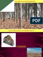 2.0 Timber 1