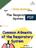 respiratorysystem-090411015528-phpapp01